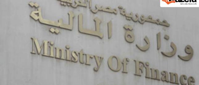 وزير المالية يكشف ملامح الموازنة الجديدة 2014 - 2015