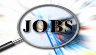 وظائف في شركات Multinational 1/9/2015