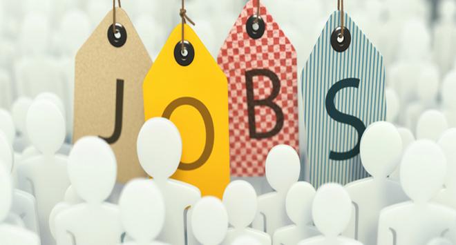 Job Vacancies 31/8/2015